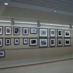2009 Synopsis-näyttely
