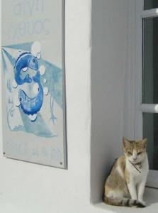 Paros Noussan kissa