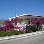 Syros ja ihmekoynnökset